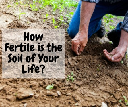 How fertile is the soil of your life diamonds and for Fertile soil 07